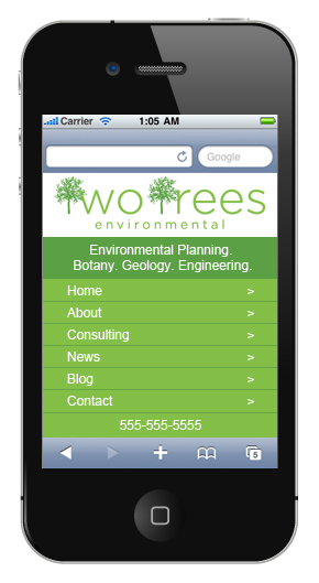 Example of a Mobile Specific Site